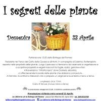 locandina-infiorita-23-04-jpg