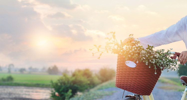 Woman with vintage bicycle fulled of flowers in the basket on summer sunset rural background