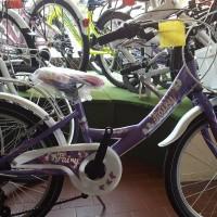"""La Fair Lady in alluminio è una bici leggera e pratica. La 20"""" nella foto è disponibile con cambio 6 velocità Shimano oppure senza. Disponibile in varie colorazioni. Anche (senza cambio) in altre misure 12, 14, 16."""