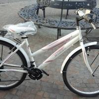 """La Romeo Grace è una bici con telaio in acciaio, ruote da 26"""", cambio Shimano 18 velocità, forcella rigida, portapacchi e parafanghi. Disponibile anche in versione più sportiva, con copertoni più tassellati e senza parafanghi. Prodotta in vari colori"""