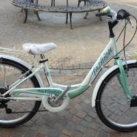 Fashion, bici in acciaio leggero, disponibile a 6 velocità, sia con ruote da 24, sia con ruote da 26. Cambio Shimano, ruota libera Shimano, portapacchi. Bici molto pratica, per uso urbano e cicloturistico