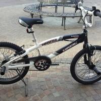 """Bici da freestyle in alluminio con ruote da 20"""", manubrio girevole a 360°, freni v-brake in alluminio, ruote con raggiatura maggiorata. Assemblata in Italia."""
