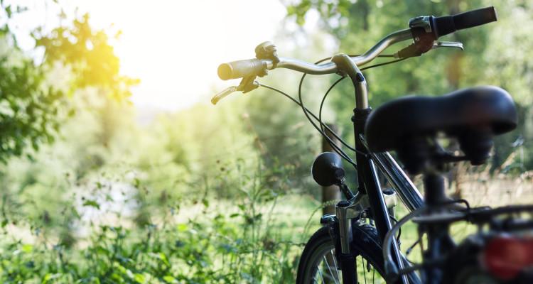 Fahrrad in der Natur