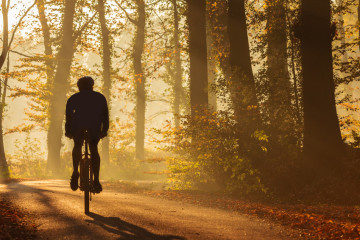 Silhouette of a biker in fall