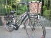 bici donna 2